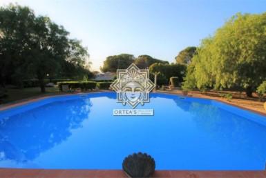 Villa cottage con grande giardino Residenziale